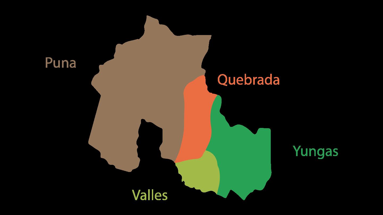 Regiones de Jujuy